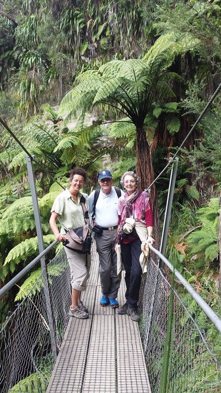 Bushwalk Wanganui National Park