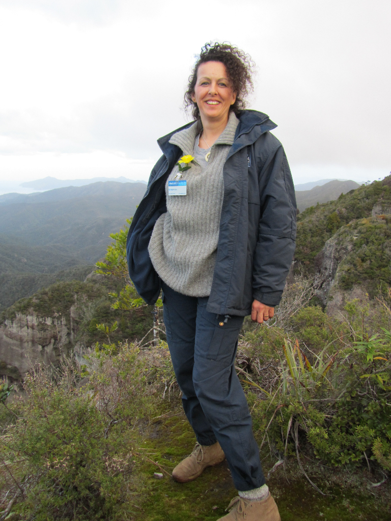 wandern, great barrier island
