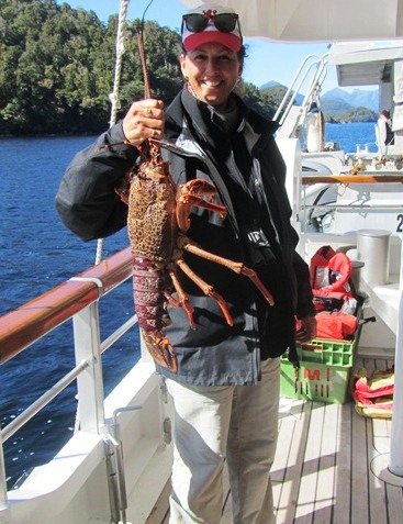Lobster catch,Fiordland, Doubtful Sound